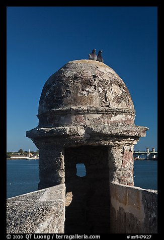 Fortified Turret, pigeons, and Matanzas Bay, Castillo de San Marcos National Monument. St Augustine, Florida, USA (color)
