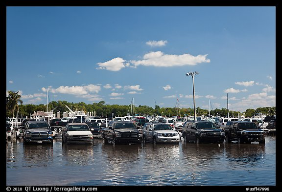 Cars in flooded lot, Matheson Hammock Park, Coral Gables. Florida, USA (color)