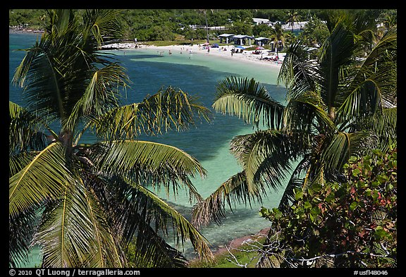 Beach seen from above through palm trees, Bahia Honda Key. The Keys, Florida, USA (color)