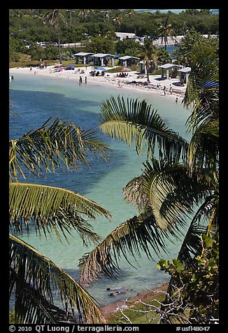 Beach and palm trees from above, Bahia Honda State Park. The Keys, Florida, USA (color)