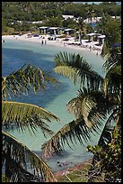 Beach and palm trees from above, Bahia Honda State Park. The Keys, Florida, USA ( color)
