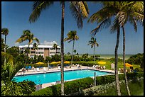 Beachside resort seen through screen, Sanibel Island. Florida, USA (color)