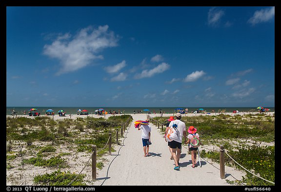 Family walking out to Bowman Beach, Sanibel Island. Florida, USA (color)