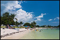 Sombrero Beach in summer, Marathon Key. The Keys, Florida, USA (color)
