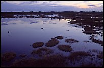 Okefenokee Swamp at sunset. Georgia, USA (color)