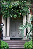Doorway with luxuriant vegetation. Savannah, Georgia, USA (color)