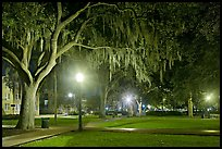 Square by night with Spanish Moss hanging from oak trees. Savannah, Georgia, USA