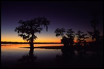 Pictures of Lake Martin
