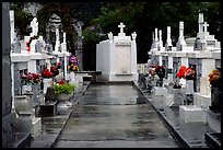 Tombs in Saint Louis cemetery. New Orleans, Louisiana, USA (color)