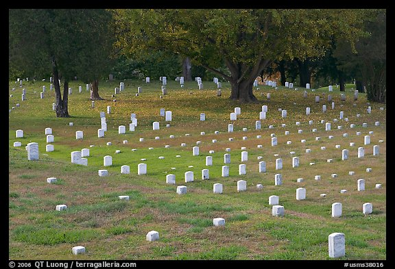 Headstones and trees, Vicksburg National Military Park. Vicksburg, Mississippi, USA (color)