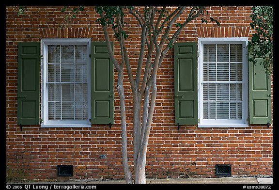 Tree and red brick facade of Texada. Natchez, Mississippi, USA
