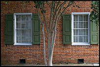 Tree and red brick facade of Texada. Natchez, Mississippi, USA (color)