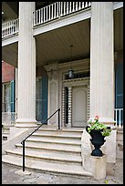Entrance stairs, door, and columns, Magnolia Hall. Natchez, Mississippi, USA (color)