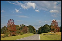 Road in meadow. Natchez Trace Parkway, Mississippi, USA