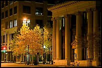 Trees in fall colors and greek revival building at night. Jackson, Mississippi, USA