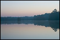 Lake at dawn. South Carolina, USA (color)