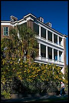 Historic antebellum mansion. Charleston, South Carolina, USA ( color)