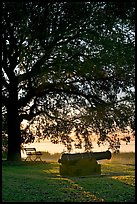 Cannon, bench, and oak tree, sunrise. Beaufort, South Carolina, USA (color)