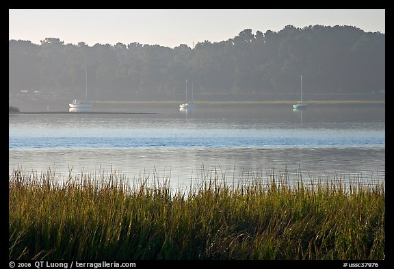 Beaufort Bay, with grasses and yachts. Beaufort, South Carolina, USA (color)