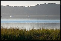 Beaufort Bay, with grasses and yachts. Beaufort, South Carolina, USA
