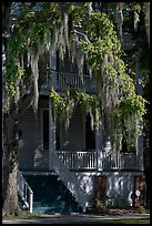 Spanish moss and balcony house. Beaufort, South Carolina, USA ( color)