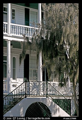 House entrance with spanish moss. Beaufort, South Carolina, USA (color)