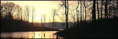 Winter landscape with bare trees and pond at sunrise. Tennessee, USA (Panoramic color)