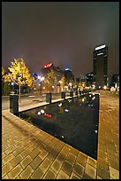 Refecting basin and skyline by night. Nashville, Tennessee, USA (color)