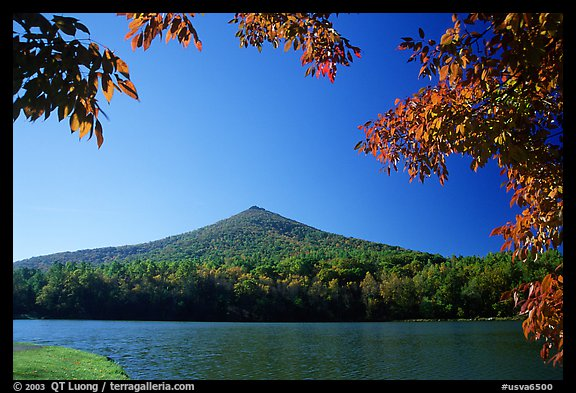 Otter peak framed by fall colors, Blue Ridge Parkway. Virginia, USA (color)