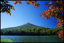 Otter peak framed by fall colors, Blue Ridge Parkway. Virginia, USA ( color)