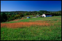 Meadow and barn. Virginia, USA