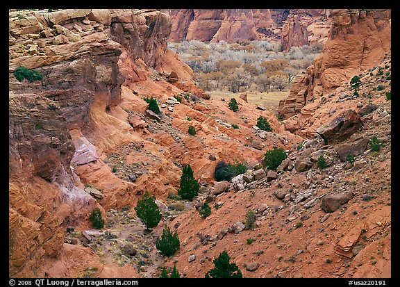 Red rocks, Canyon de Chelly, Junction Overlook. Canyon de Chelly  National Monument, Arizona, USA (color)
