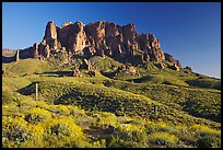 Superstition Mountains in spring, Lost Dutchman State Park, late afternoon. Arizona, USA ( color)