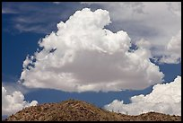 Cloud and ridge with saguaro cactus, Sonoran Desert National Monument. Arizona, USA (color)