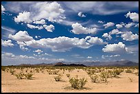 Sandy plain and clouds, Sonoran Desert National Monument. Arizona, USA
