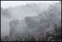 Fog and spires. Chiricahua National Monument, Arizona, USA