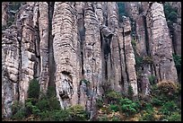 Organ pipe volcanic rock formations. Chiricahua National Monument, Arizona, USA ( color)