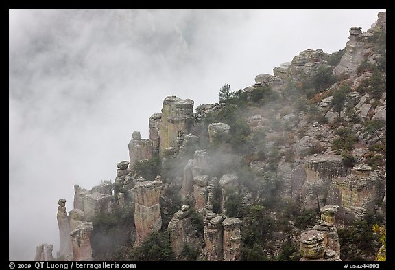 Rock pillars and fog. Chiricahua National Monument, Arizona, USA (color)