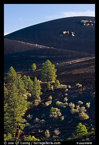 Cinder cone detail, Sunset Crater Volcano National Monument. Arizona, USA (color)