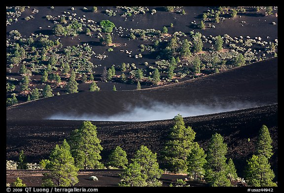 Steam rising from cinder landscape, Sunset Crater Volcano National Monument. Arizona, USA (color)