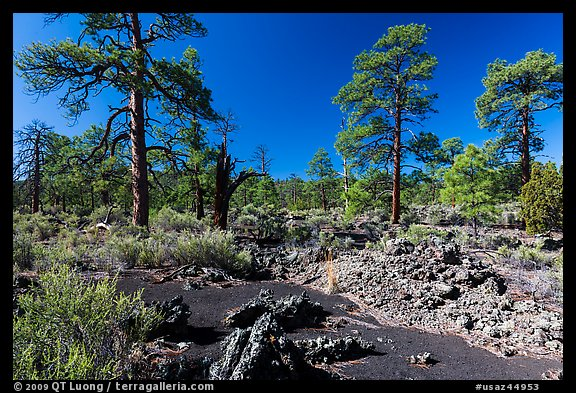 Kana-a lava flow, Coconino National Forest. Arizona, USA (color)
