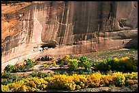 White House Anasazi ruins and wall with desert varnish. Canyon de Chelly  National Monument, Arizona, USA (color)