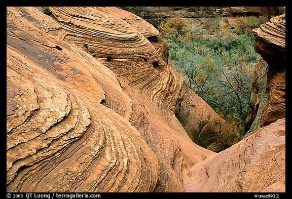 Sandstone Swirls. Canyon de Chelly  National Monument, Arizona, USA (color)