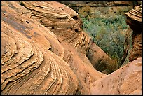 Sandstone Swirls. Canyon de Chelly  National Monument, Arizona, USA ( color)