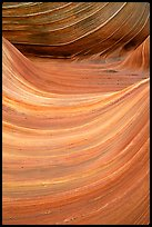 Ondulating sandstone stripes, The Wave. Coyote Buttes, Vermilion cliffs National Monument, Arizona, USA (color)