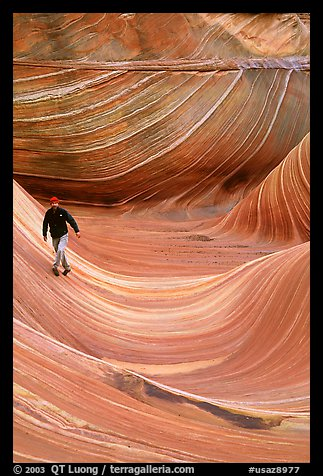 Hiker balances himself in the Wave. Coyote Buttes, Vermilion cliffs National Monument, Arizona, USA (color)