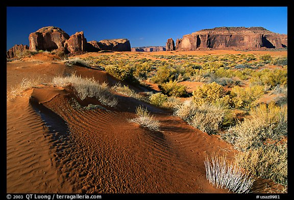 Sand dune and mesas, late afternoon. Monument Valley Tribal Park, Navajo Nation, Arizona and Utah, USA (color)