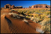 Sand dune and mesas, late afternoon. Monument Valley Tribal Park, Navajo Nation, Arizona and Utah, USA