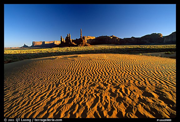 Sand dunes, Yei bi Chei, and Totem Pole, late afternoon. Monument Valley Tribal Park, Navajo Nation, Arizona and Utah, USA (color)