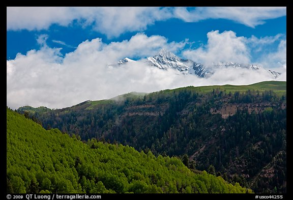 Snowy Mt Wilson emerging from clouds in the spring. Colorado, USA (color)